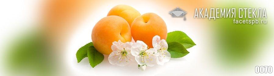 Фото для стеклянного фартука абрикос