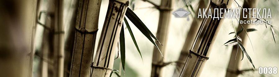 Фото для фартука бамбук