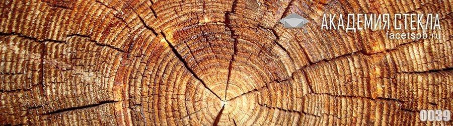Фото для фартука дерево