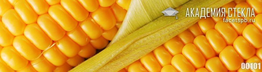 Фото для стеклянного фартука кукуруза