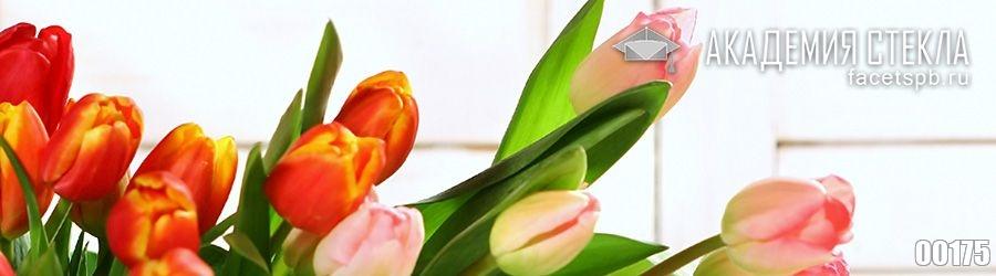 Фото для фартука букет тюльпанов