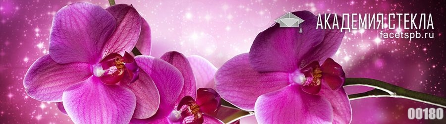Фото для фартука розовые цветы