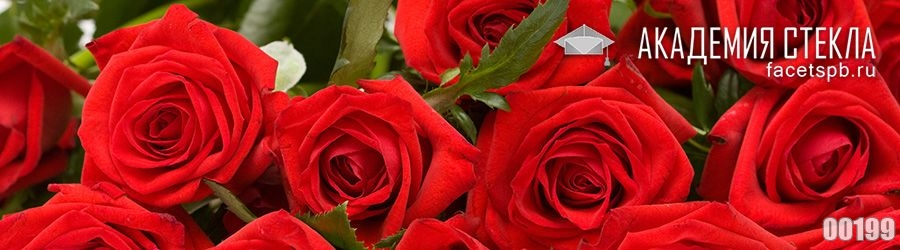 Фото для фартука из стекла розы