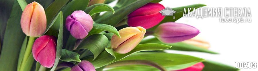 Фото для стеклянного фартука тюльпаны