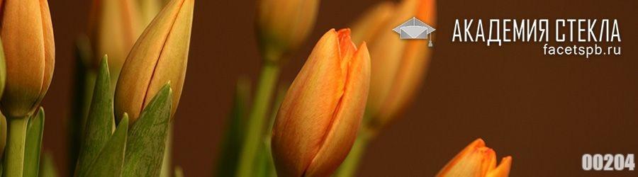 Фото для фартука бесплатно тюльпаны