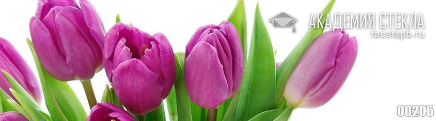 Фотобанк для фартука тюльпаны