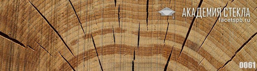 фото для фартука сруб дерева