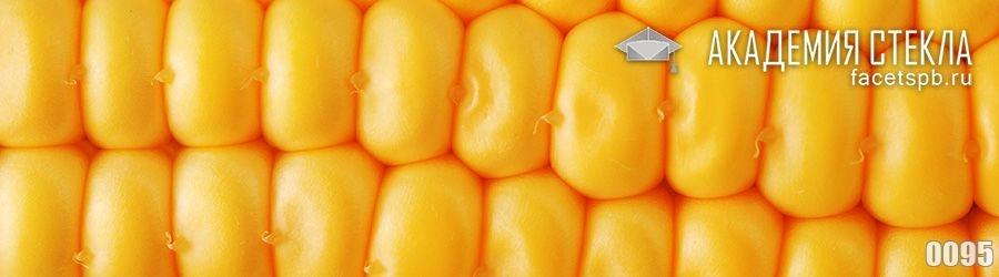 фото для фартука зерна кукурузы