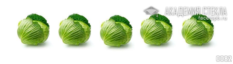 Фото для стеклянного фартука капуста