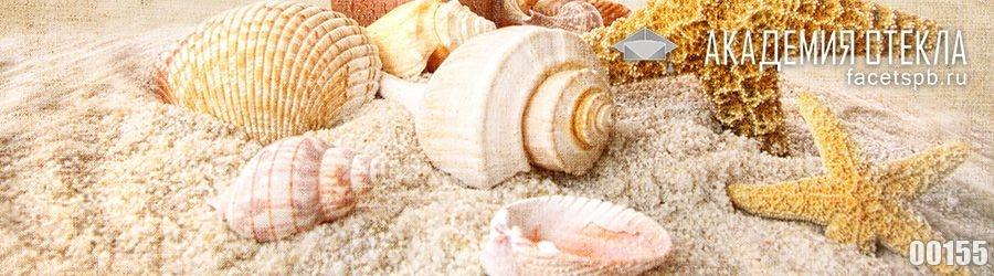 фото для фартука ракушки на пляже