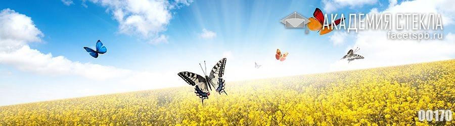 Фото для фартука бабочки в поле