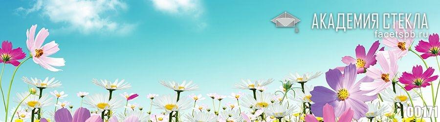 Фото для фартука летние цветы