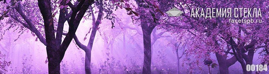 Фото для фартука красивый лес