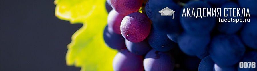Фото для стеклянного фартука виноград