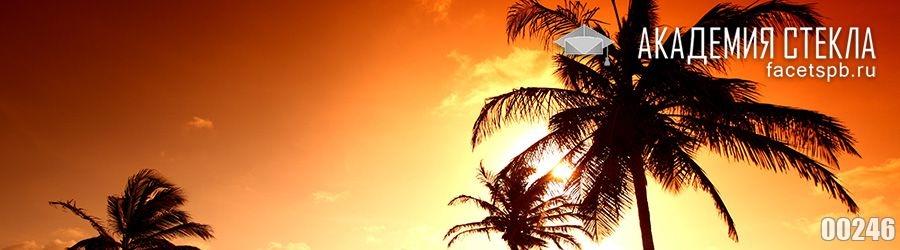 фото для фартука закат и пальмы