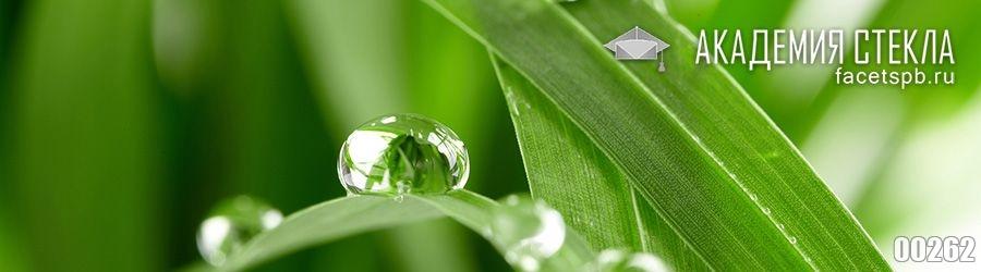Фото для фартука капли на траве